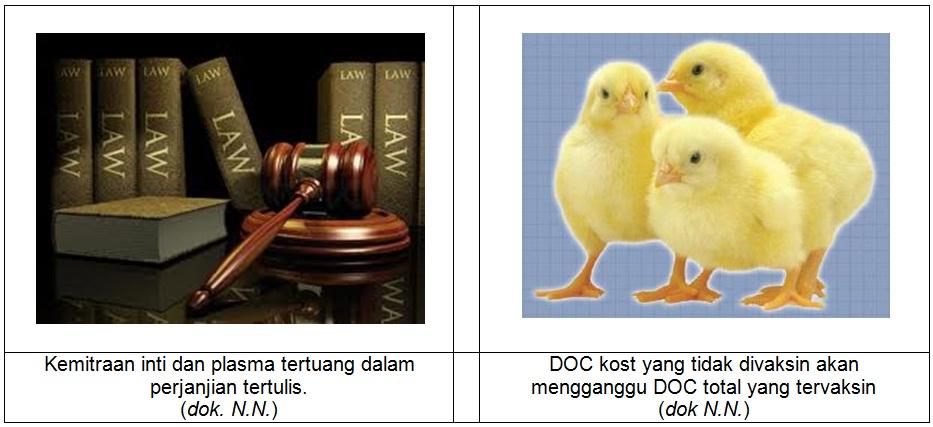 Tesis hukum pidana terbaru